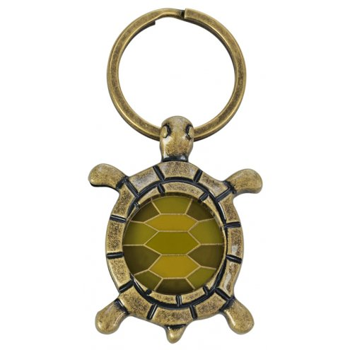 Blue Bug Coin Holder 'Turtle' Gold