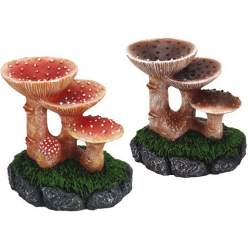 Lucky Reptile Deco Wood Mushrooms