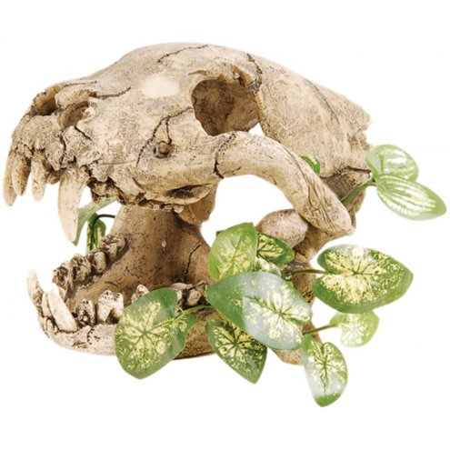 RepStyle Skull with Silk Plant 19.5cm