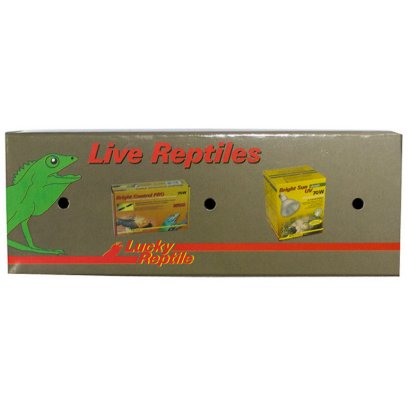 Lucky Reptile Transport Box for Lizards Small