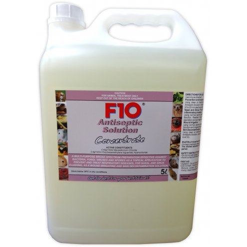 F10 Antiseptic Solution 5 Litre