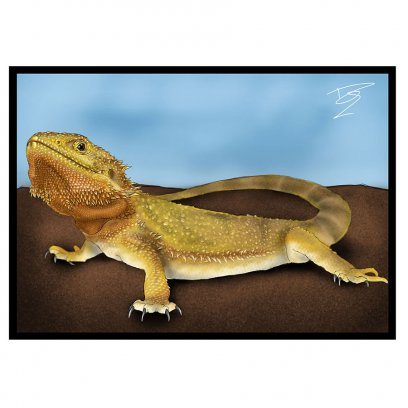Creative Chameleon Card Bearded Dragon