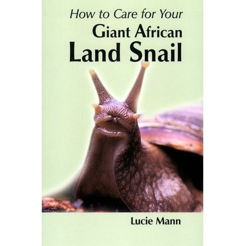 How to care for Your African Land Snail
