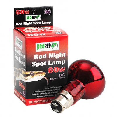 ProRep Red Night Spot Bulb 60W BC (Bayonet)