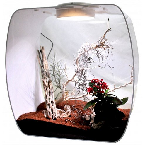 Lucky Reptile Life Box 35 Desert Decorated