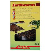 Lucky Reptile Earthworms 20g