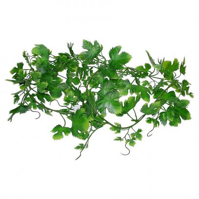 Lucky Reptile Grape Leaf Vine approx. 200 cm