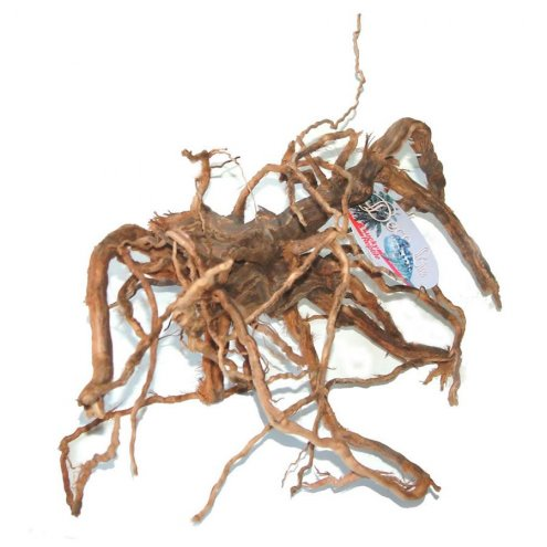 Lucky Reptile sand-blasted Vine Root Medium