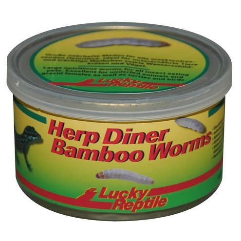 Lucky Reptile Herp Diner Bamboo Worms