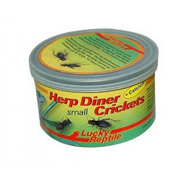 Lucky Reptile Herp Diner Small Crickets 35g