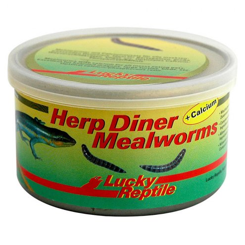Lucky Reptile Herp Diner Mealworms + Calcium