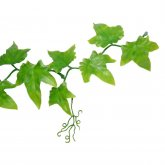 Lucky Reptile Ivy Vine approx. 200 cm