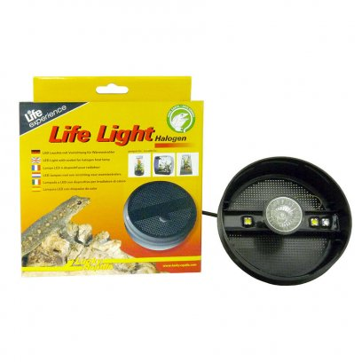 Lucky Reptile Life Light - Halogen round
