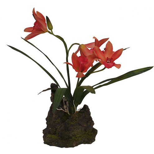 Lucky Reptile Upright Orchid Red 25cm
