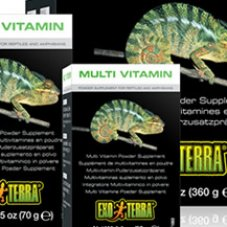 eyed lizard supplements