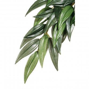 Exo Terra Silk Plant Ruscus Medium