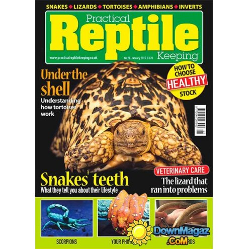 Practical Reptile Keeping January 2015