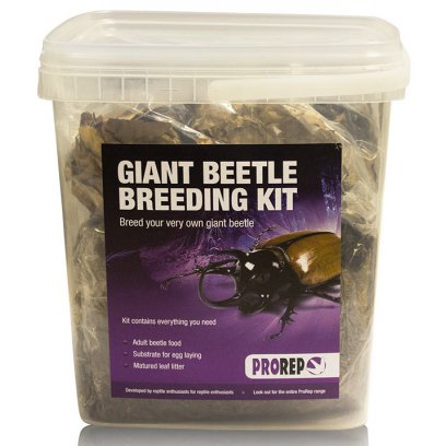 ProRep Chafer Beetle Rearing Kit
