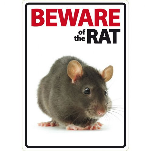 Beware Sign: Rat