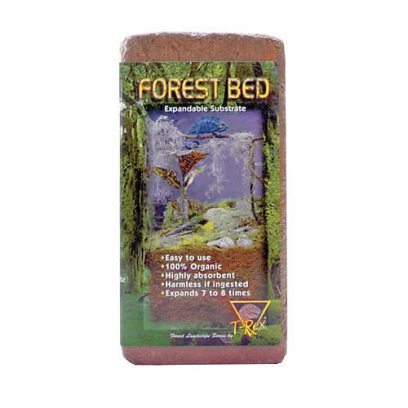 T-Rex Forest Bed Standard