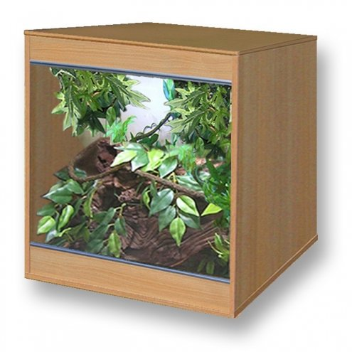 Vivexotic Ellmau Beech MODX36  Vivarium MAIN 919x919x919mm