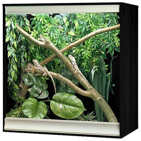 Vivexotic Viva+ Arboreal Vivarium - Medium Black 86x49x91.5cm