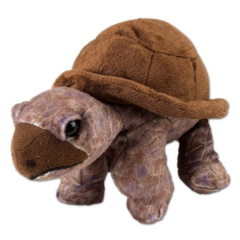 Wild Republic Cuddlekins Mini Tortoise 20cm Soft Toy