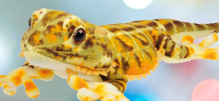 Gecko Gift Shop category