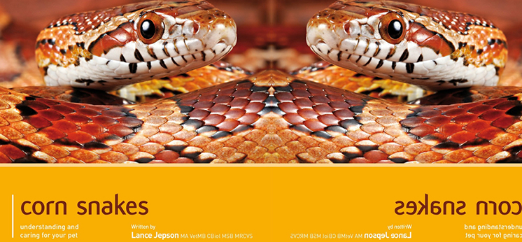 Corn Snake Books category