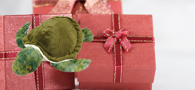 Turtle Gift Shop category