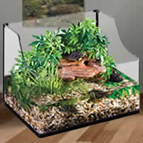 turtle and terrapin tanks
