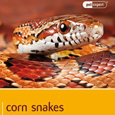 African House Snake Books