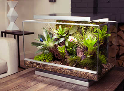 Reptile Terrariums Stands Amp Accessories Reptile Centre