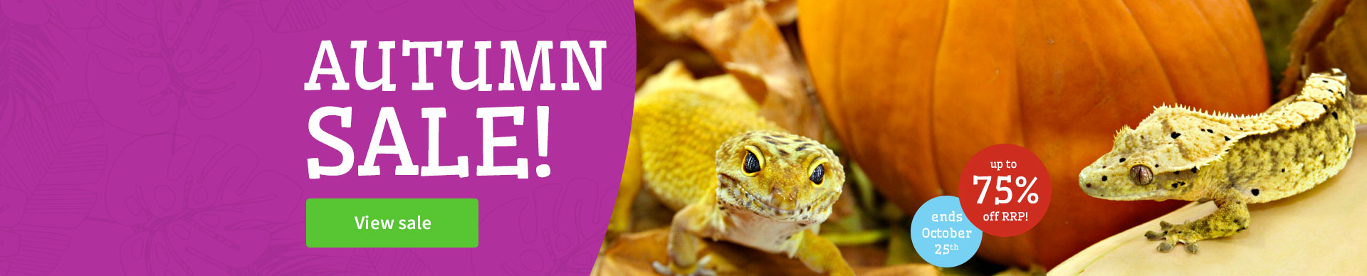 autumn sale reptile products