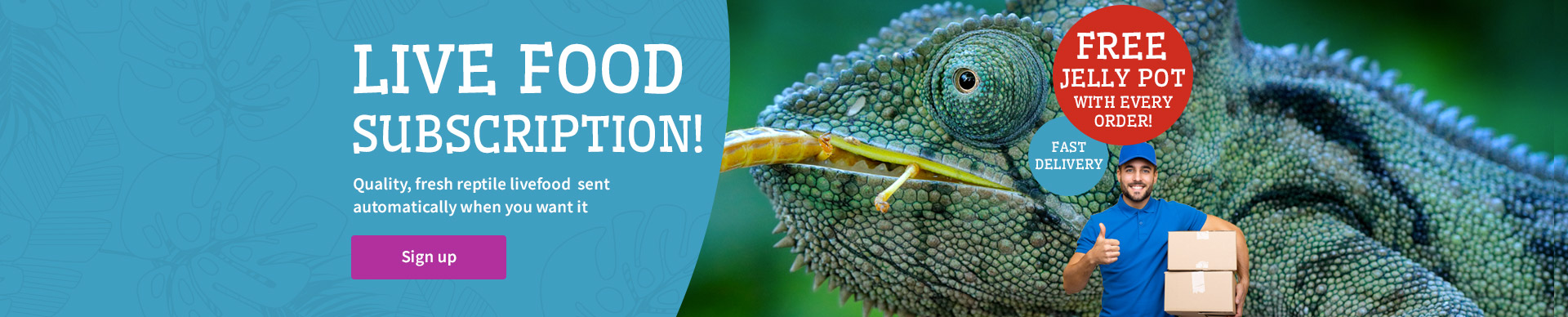 reptile livefood subscription