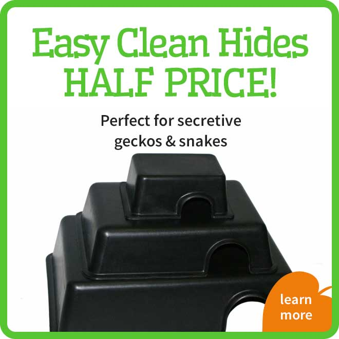 Easy clean hides Offer