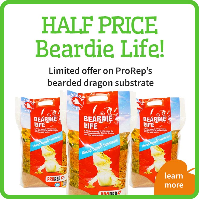 Beardie Life Offer