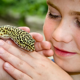 Health for Reptiles