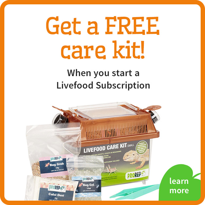 Livefood Care Kit Offer