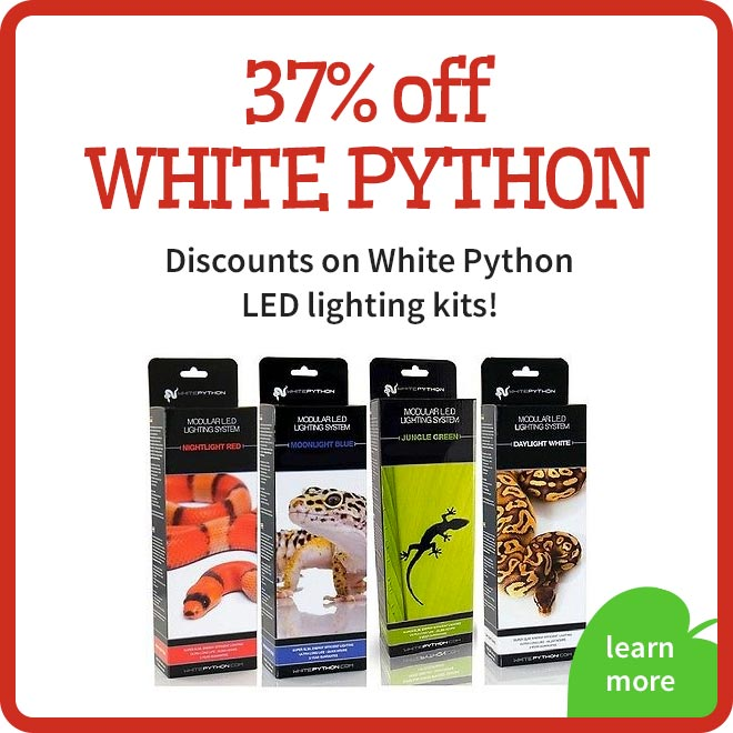 White Python LED Offer